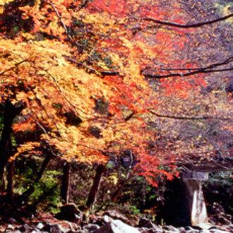 備後地域の秋