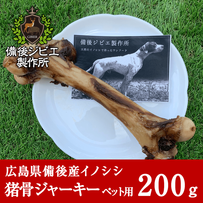 boar_pet_bone_500